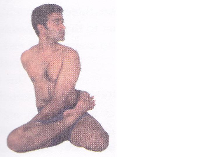 seks-s-brahmachari